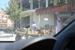 Horse and cart on the Albanian roads